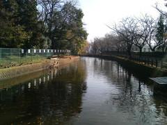 城の内公園1